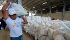 Así planean en Cúcuta el cruce de la ayuda hacia Venezuela