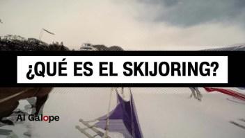¿Qué es el Skijoring?