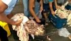 Venezuela: Regalan la comida por falta de electricidad