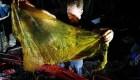 Hallan más de 40 kilos de plástico en el estómago de una ballena muerta