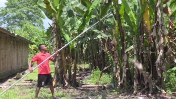 Denuncia por esclavitud laboral en Ecuador