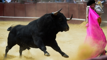 corridas toros roca rey