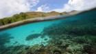 """Cerrarán las """"puertas"""" de la isla Komodo por un año y está es la razón"""