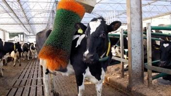 Agricultura en 5G