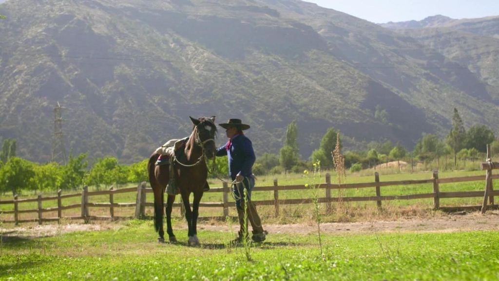 Arrieros, legado nacido en Los Andes