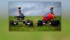 Robots granjeros más productivos