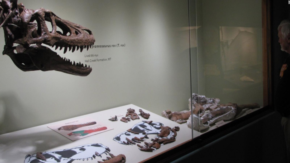 Subasta prehistórica en eBay