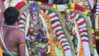 Matrimonio de dioses atrae a multitudes en India