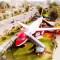 Aviones, restaurantes