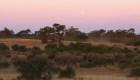 Botswana: Levantan veda de caza de elefantes
