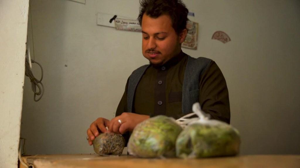 Khat en Yemen: la droga más consumida por las familias