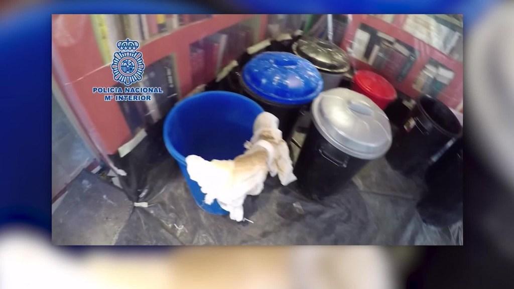 Detienen a banda que traficaba cocaína en productos plásticos