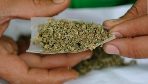 Perdón automático para condenados por poseer marihuana en Illinois