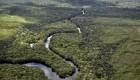 342 Amazonia: una app para el activismo ambiental en Brasil