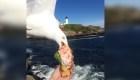 La increíble foto de una gaviota robando comida