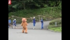 Japón: Simulacro de ataque felino en el zoo