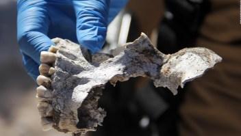 Más de 8.000 cuerpos sin identificar en servicios forenses