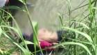 Padre e hija se ahogan en el Río Grande al intentar llegar a EE.UU.