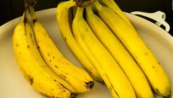 Sospecha de hongo en bananos de Ecuador