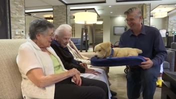 El nuevo mejor amigo de pacientes de Alzheimer