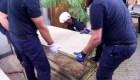 Vaticano: No se hallan restos de Emanuela Orlandi