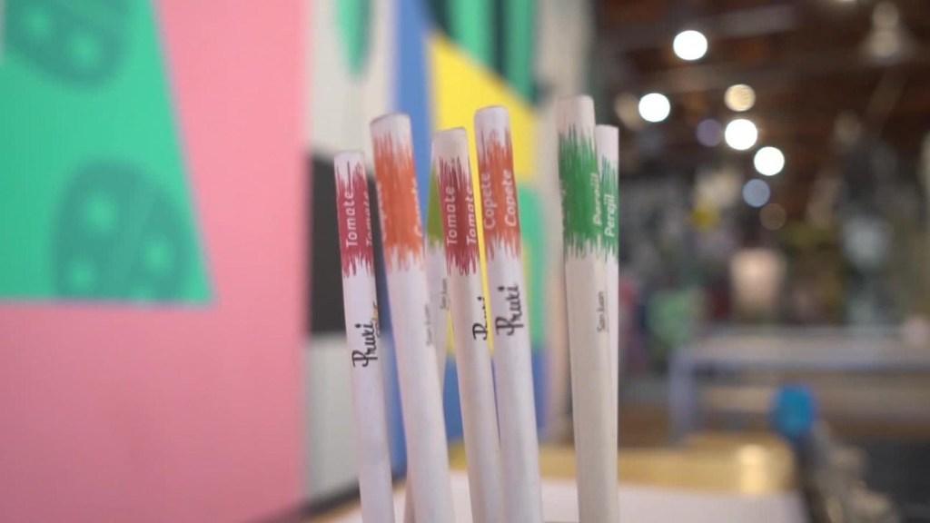 Estos lápices se convierten en una planta