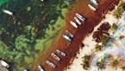El sargazo en Cancún, ¿peligran las firmas turísticas?