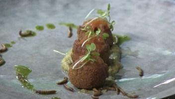 Abren restaurante de solo insectos en Sudáfrica