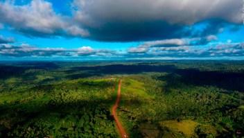 ¿Cuál será el futuro de la selva amazónica en Brasil?