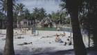 Así lucharon los cubanos contra la discriminación en Miami
