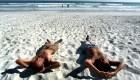 Las 5 playas más populares de Sudamérica
