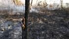 MinutoCNN: La Amazonia arde a una velocidad récord