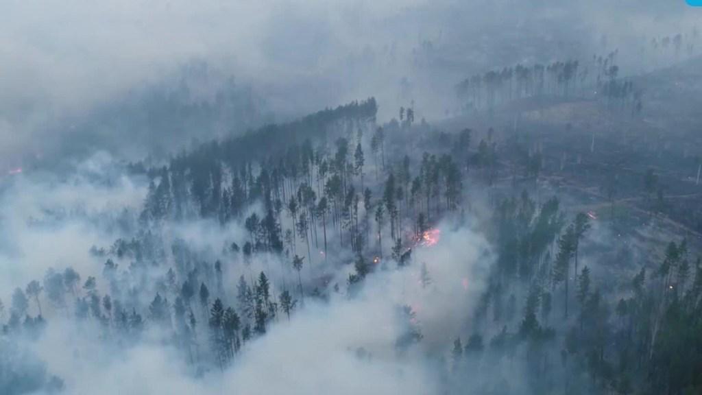 Alerta en Amazonas y el Ártico por incendios