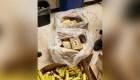 Descubren un millón de dólares de cocaína entre bananas