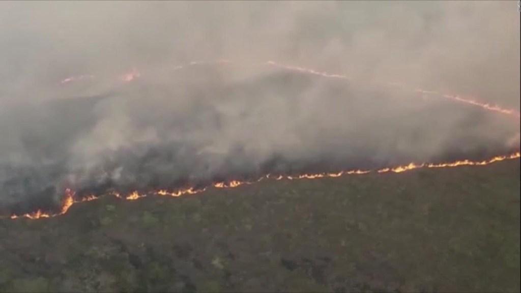 """Incendios en Bolivia: """"Una verdadera catástrofe ambiental"""""""