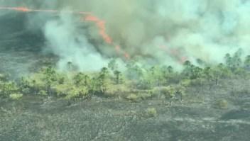 Más de 700.00 hectáreas de bosque arden en Bolivia