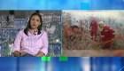 Evo Morales frente a los incendios en Bolivia