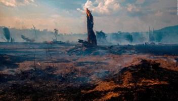 Disminuyen incendios en Amazonas, según Gobierno de Brasil