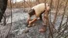 Rescatan una anaconda en Bolivia