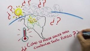 Lo que debes saber sobre el Amazonas, resumido con dibujos