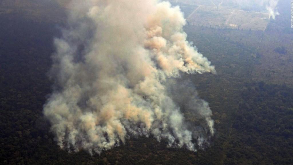 Incendios en el Amazonas y cambio climático en América Latina