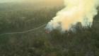 Amazonas: estremecedoras imágenes de crímenes ambientales