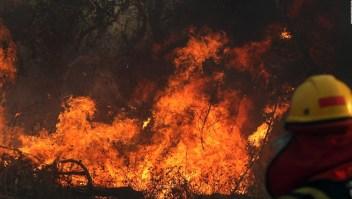 Incendios queman 2 millones de hectáreas en Bolivia
