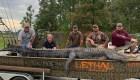 Cazan un caimán de más de cuatro metros en Georgia