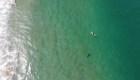 Un dron le advirtió que tenía cerca a un tiburón