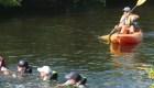 Mira el curioso rescate de estos delfines de un canal