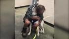 Emotivo reencuentro de un perro con su dueño en Memphis