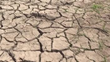 Sequías en Honduras