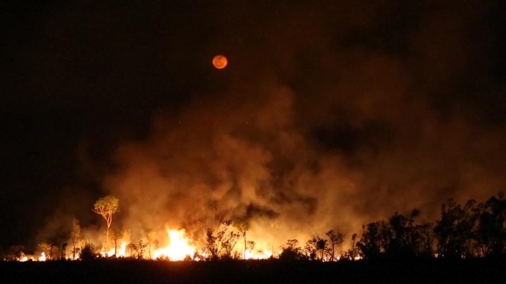 Incendios en Amazonas: ya tienen consecuencias en la salud