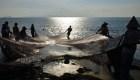 Las prácticas ilegales de pesca, ¿cómo afectan?
